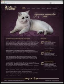 Разработка сайта для питомника британских шиншилловых кошек «Eli
