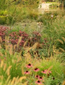 Сад по удольфіанським мотивам