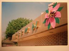 Магазин Цветов-объемные буквы и композиция