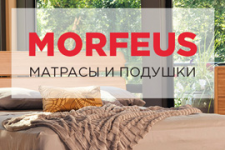 Wordpress morfeus.com.ua
