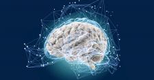 БАДы для нервной системы