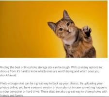 Online Photo Storage Sites