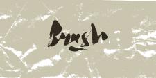 Brush tag