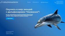 Дизайн сайта, для дельфинариума
