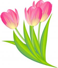 Цветной векторный рисунок