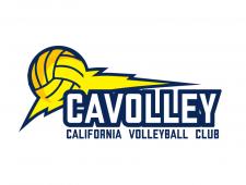 Логотип для волейбольной команды в Калифорнии