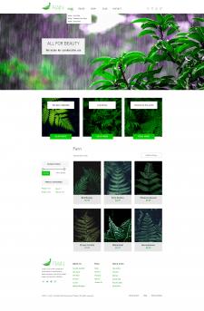 """Макет для сайта по продажі папоротників """"RAIN"""""""