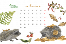 календарь с детенышами животных