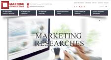 Maxrise consulting - Маркетинговые исследования