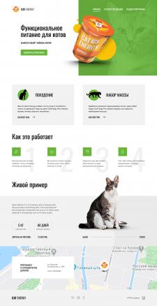 Адаптивная верстка сайта Cat Energy