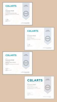 Сертификаты курсов.
