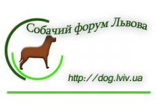 Визитка_4