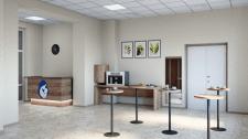 Визуализация холла перинатального центра