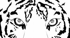 Векторная графика - глаза тигра