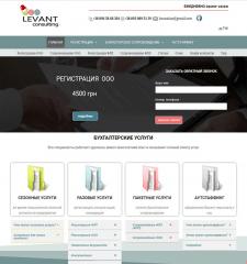 Levant consulting