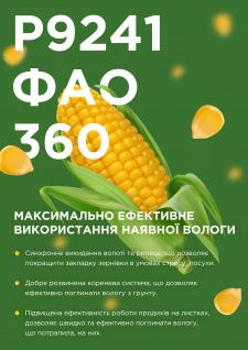 Продажа семян кукурузы — креативный баннер