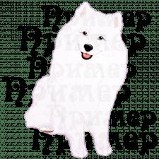 Собачка :)