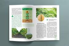 Верстка и дизайн каталога «Агроматематика»