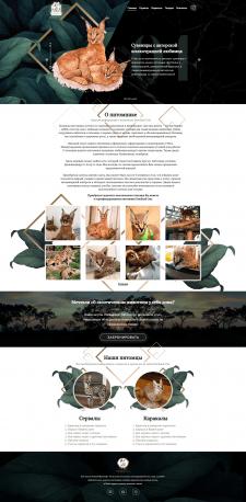 Питомник экзотических животных Daniland Cats