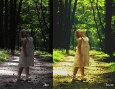Обработка, цветокоррекция фотографии.