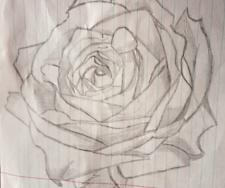 ескіз троянди