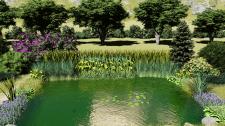 Визуализация пруда с зоной регенерации.