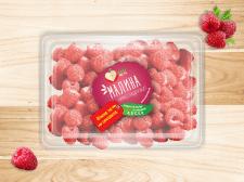 Дизайн серии этикеток ягод
