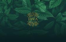 """""""Diva"""" cosmetics логотип та айдентика"""