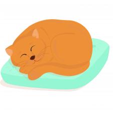 Иллюстрация ( Flat style)