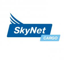 Логотип для авиа перевозчика \ Россия \ 2007 год