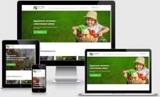 Сайт для НПФ «НОРД» | WordPress