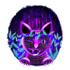 Черничный кот