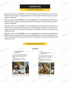 Эксклюзивный дистрибьютор колясок // Таргетинг
