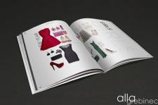 Журнал. Разворот 11