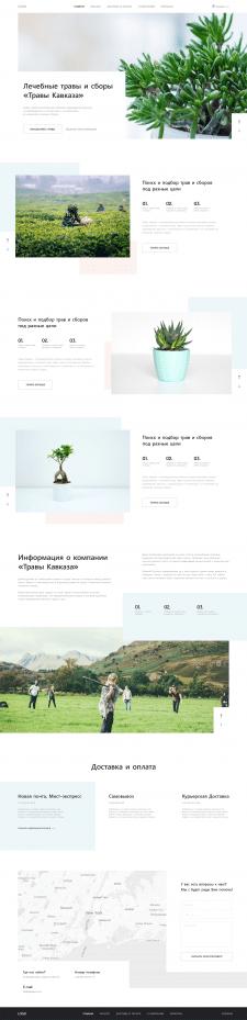 Дизайн лендинга | Кавказские травы