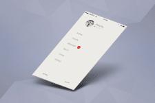 Графическая оболочка для приложения на IOS