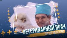 Заставка ветеринарный врач