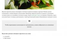 Хобби: карвинг из овощей и фруктов