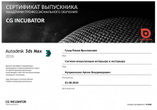 Сертификат CG INCUBATOR