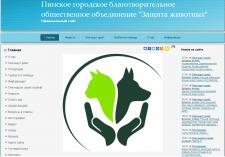 Создание и ведение сайта (первые 1,5 года)
