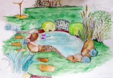 Эскиз небольшого пруда