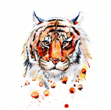 Тигр принт для футболки