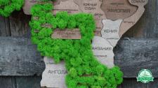 Карта Світу з елементами стабілізованого моху