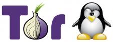 Сайт в сети TOR