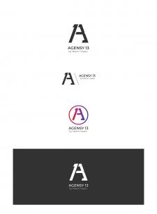 Agency 13