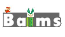 Логотип для сайта Baims №1
