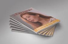 Разработка журналов.