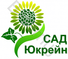 Сад
