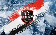 Баннер для сборов хоккейной команды