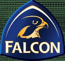 Лого Falcon